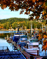 Gig Harbor Boats