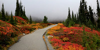 Autumn Colors on Mt. Rainier