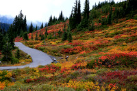 Autumn Colors on Mt. Rainier, II
